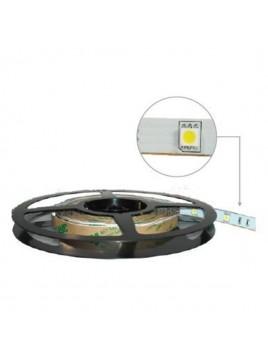 Taśma 150 LED 5050 36W 12V 5m ciepły biały LIGHTECH