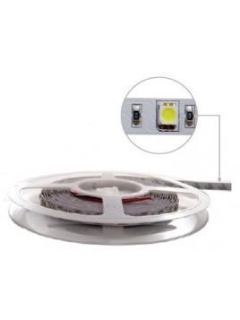 Taśma 300 LED 5050 72W 12V 5m ciepły biały LIGHTECH