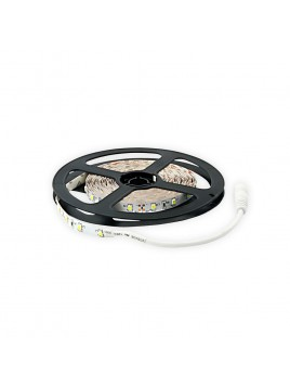 Taśma 300 LED 3528 24W 12V 5m zimny biały LIGHTECH