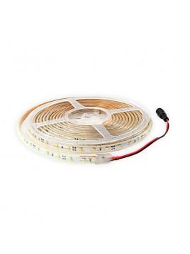 Taśma uniwersalna 300 LED 3528 24W 12V 5m ciepły biały LIGHTECH